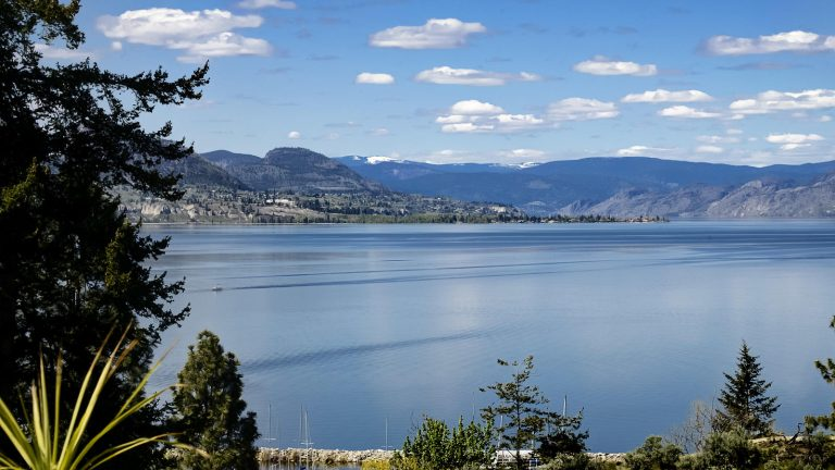 Okanagan Lake Views
